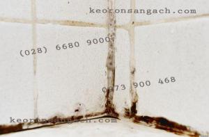 Chai xịt ron gạch sản phẩm chà mạch chất lượng cao